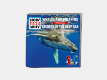 Whales and Dolphins / Secrets of the Deep Sea